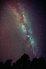 Milky way @ 14 mm