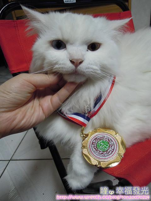 20121015 (23)