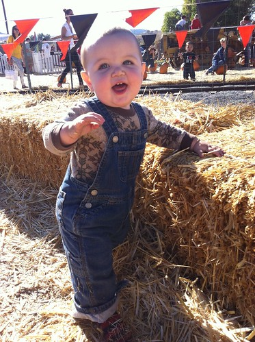 One more pumpkin patch picture