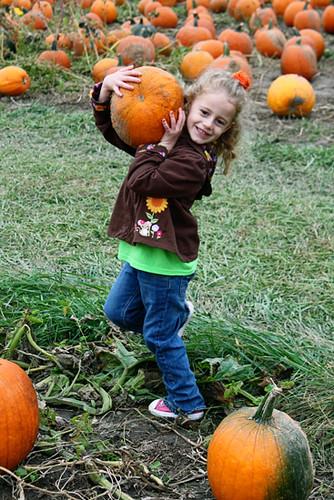 Autumn-Balancing-Pumpkin