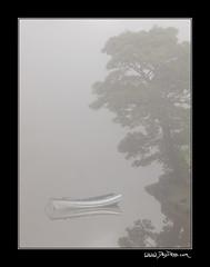 Coquet Fog