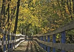 Au bout de l'automne / To the end of Autumn