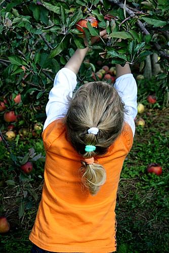 Auttie-picking-apple