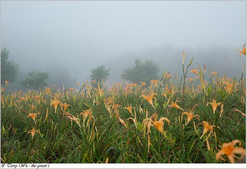 雲霧中的六十石山-13