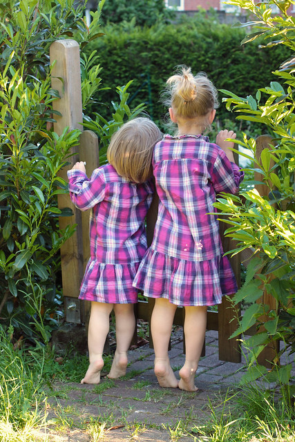 girls peek over fence