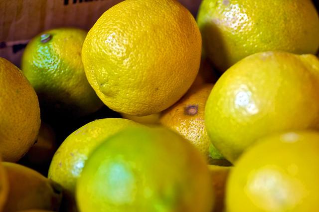 Meyer Lemons_2