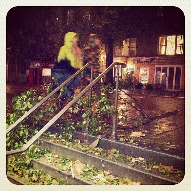 #Sandy finally hits: Branches down all over the East Village NYC