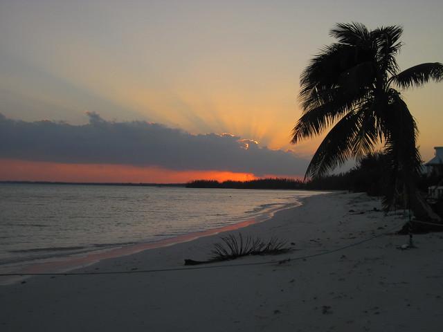 sunset abaco palms