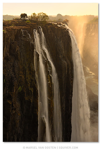 africa elephant water sunrise photo waterfall falling safari workshop zimbabwe victoriafalls tours zambia africanelephant workshops loxodontaafricana phototours squiver squiverphototours