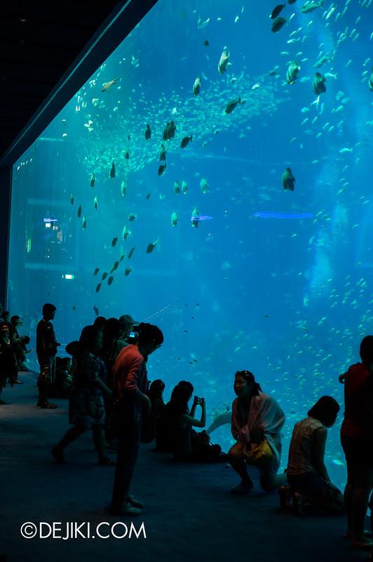 S.E.A. Aquarium - Overview