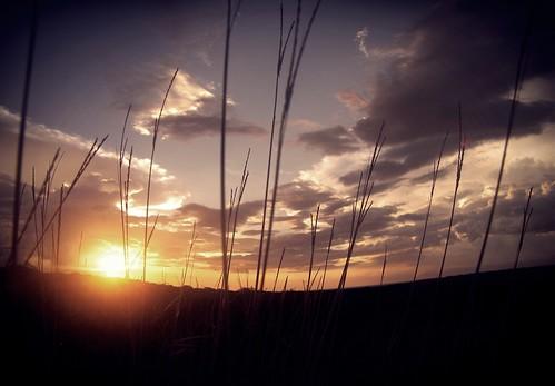 sunset atardecer venezuela lentes entardecer objetivos anzoategui abigfave flickraward cantaura mygearandme flickrawardgallery