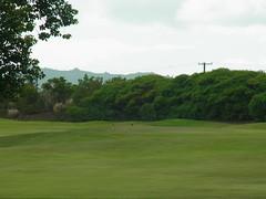 Kauai Lagoon Golf Club 441