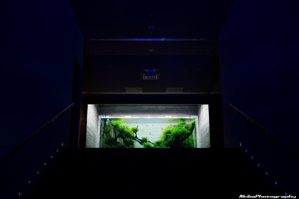 sumida-aquarium#2