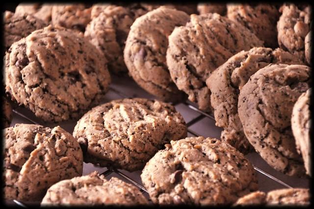 Chocolate Chip-Ground Coffee Bean Cookies