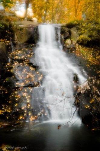 longexposure autumn trees copyright white distortion abstract motion blur color green art fall nature wet water colors leaves yellow misty river daylight focus shiny rocks soft glow branches fine smooth nj falls dreamy concept liquid nd110 richardkownacki