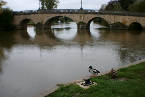River Thames at Wallingford, England