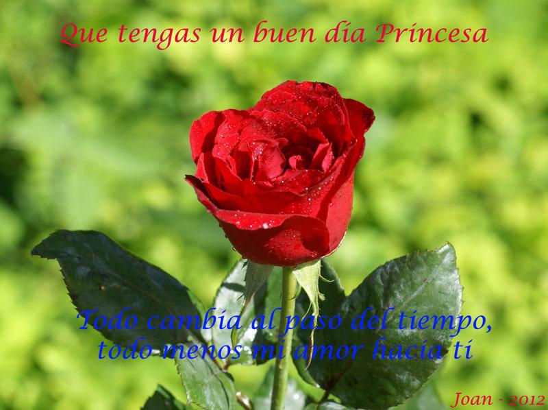 Feliz dia Princesa
