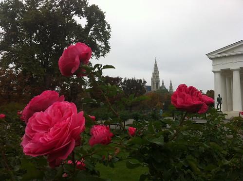 Vienna Flowers
