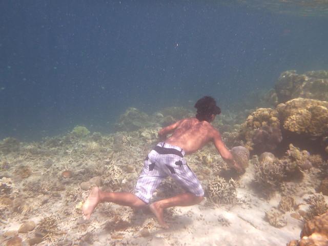 船夫們都好厲害~只要一副蛙鏡就可以下海了!
