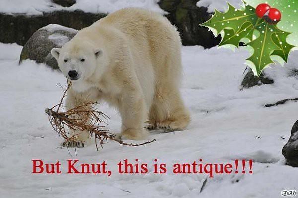 knutchristmas1