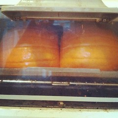 Is that a pumpkin in your toaster oven or are you just happy to see me?