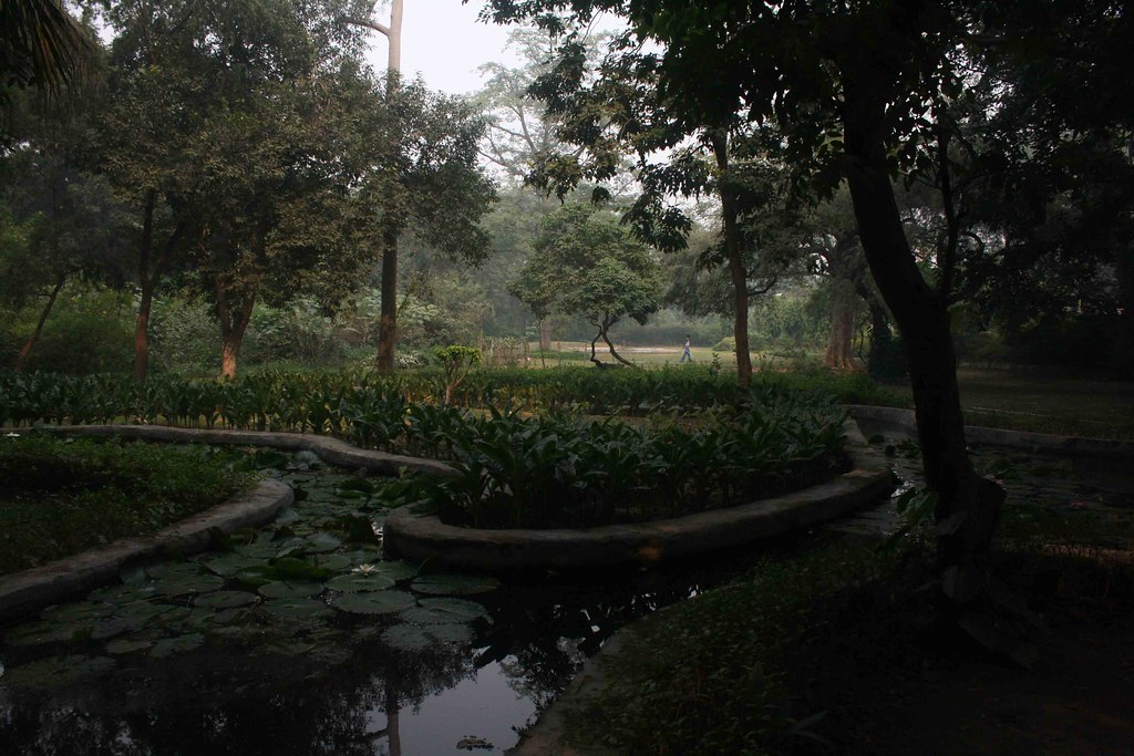 City Hangout – Lotus Pond, Lodhi Gardens