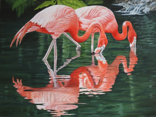Flamingos Feeding by Sid's art