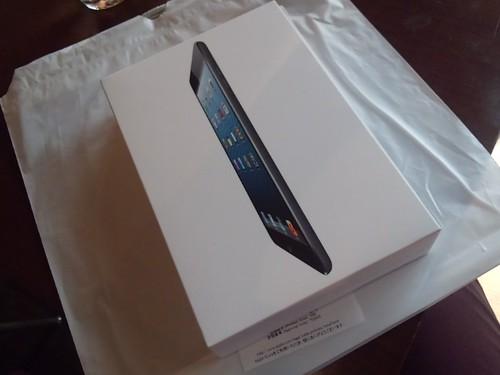 iPad mini 設定