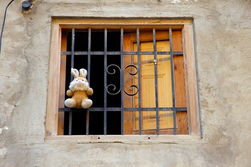 El osito en la ventana