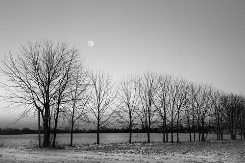 trees winter moon snow nature field canon landscape virginia twilight war long exposure unitedstates farm landmark civil 7d battlefield fredericksburg candidcamera 2470 2013