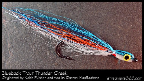 #3 Blueback Thundercreek by Darren MacEachern