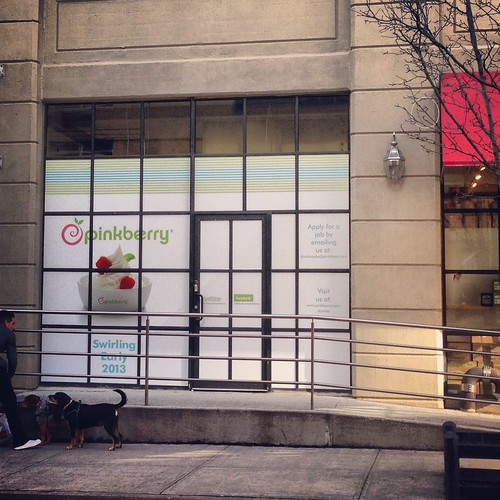 Pinkberry comes to Dumbo in the spring 2013.