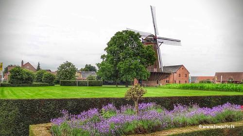 Windmill Arbeid Adelt, Weelde, Belgium - 4418