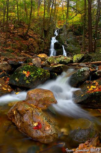autumn trees fall colors leaves creek waterfall falls fitzgerald