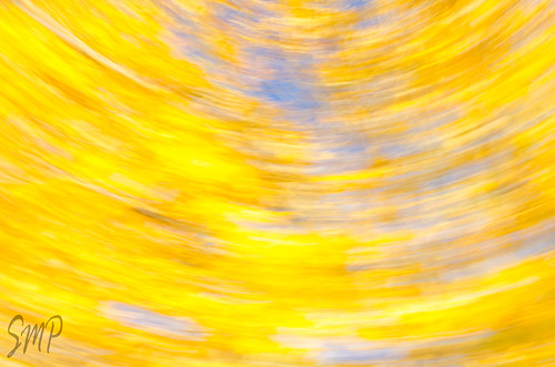 Abstract Fall by UpstateNYPhototaker