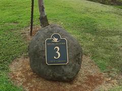 Kauai Lagoon Golf Club 411