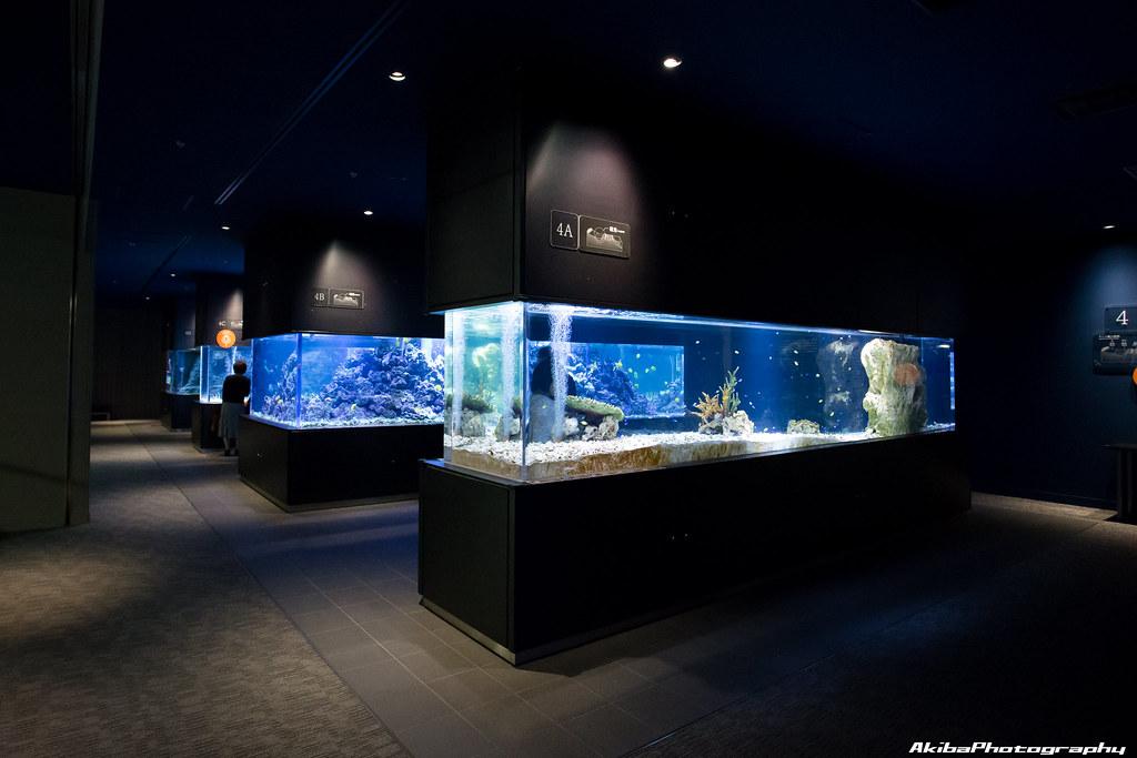 sumida-aquarium#16
