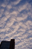夕暮れうろこ雲