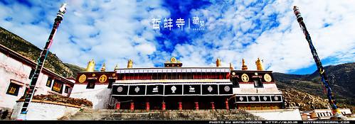 8102213013 12523c9ca8 藏梦●追寻诺亚方舟之旅:神秘藏传佛教   王佳冬个人博客