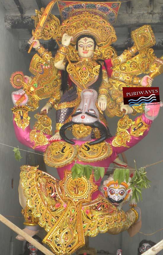 Sunya Gosani