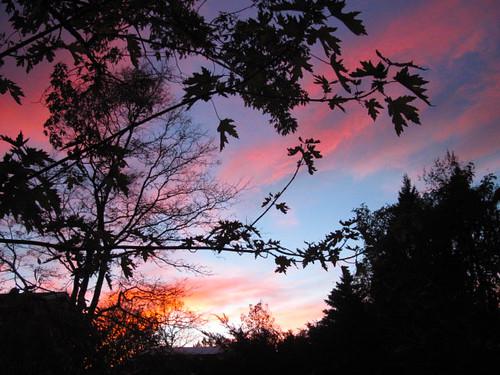 Fall sunset, Boulder CO
