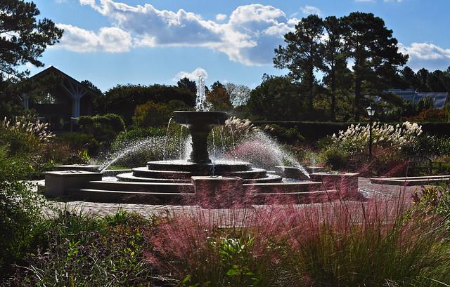 Baker Perennial Garden (2)
