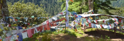 prayer flags - wide