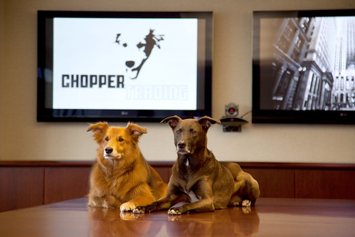 Raj Fernando Dogs visit Chopper Trading