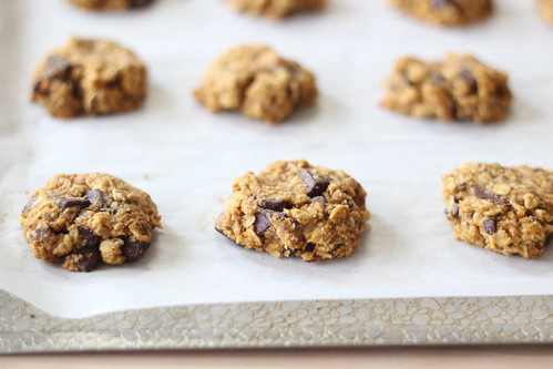 Pumpkin meets chocolate in these chewy oatmeal cookies. This small ...