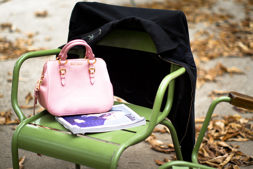 Miu Miu Madras Bauletto purse in the Tuileries, Paris