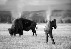Colorado-Yellowstone, Fall 2012