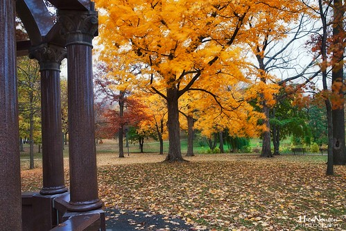 park autumn fall colors canon2470 rememberthatmomentlevel1 nguyenphotos