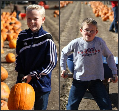 PumpkinPatchCollage2