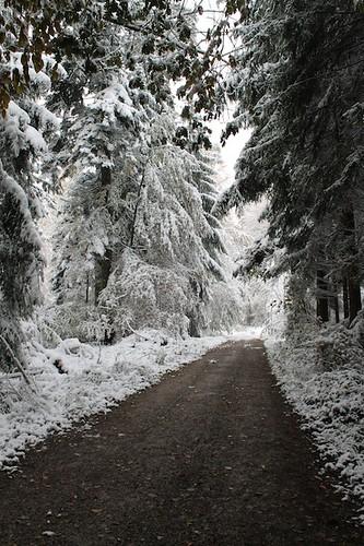 schnee2012_01